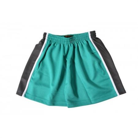 Great Western Academy PE Shorts