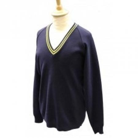 Swindon Academy House Pullovers