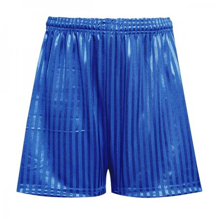 David Luke Shadow Stripe Royal Shorts